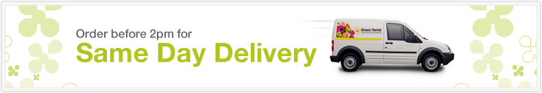 Order before 2pm for delivery same day delivery